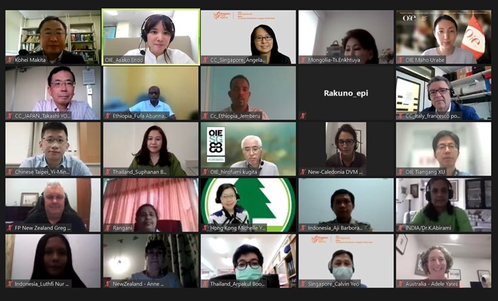OIE Collaborating Centres for Food Safety held a webinar and hands-on training on food safety risk analysis for the OIE Members in Asia and Pacific region